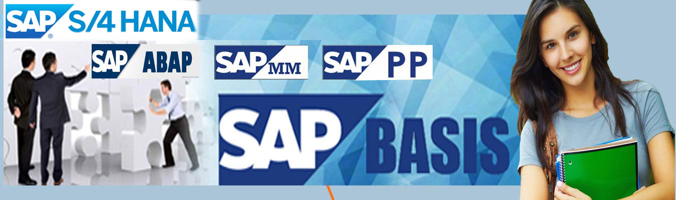 SAP Training Course in Chandigarh Mohali Panchkula