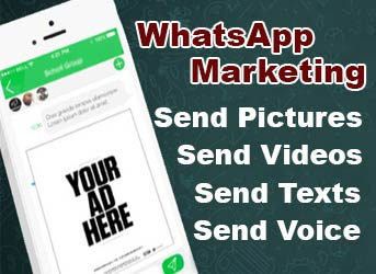 WhatsApp Marketing Training in Chandigarh